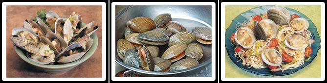 recipe: mahogany clams cost [16]